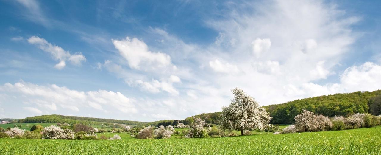 Bliesgaulandschaft im Saarpfalz-Kreis, Foto:Eike Dubois